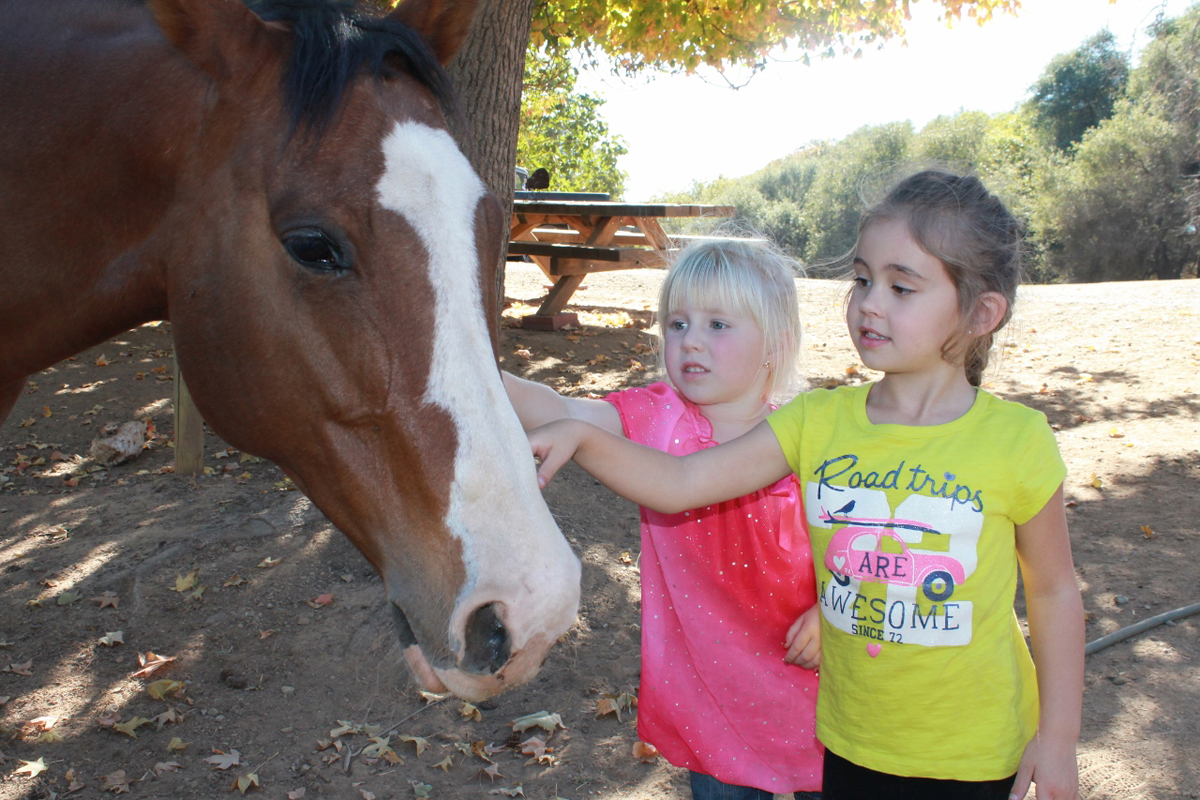 equine_experience_kids_hourse